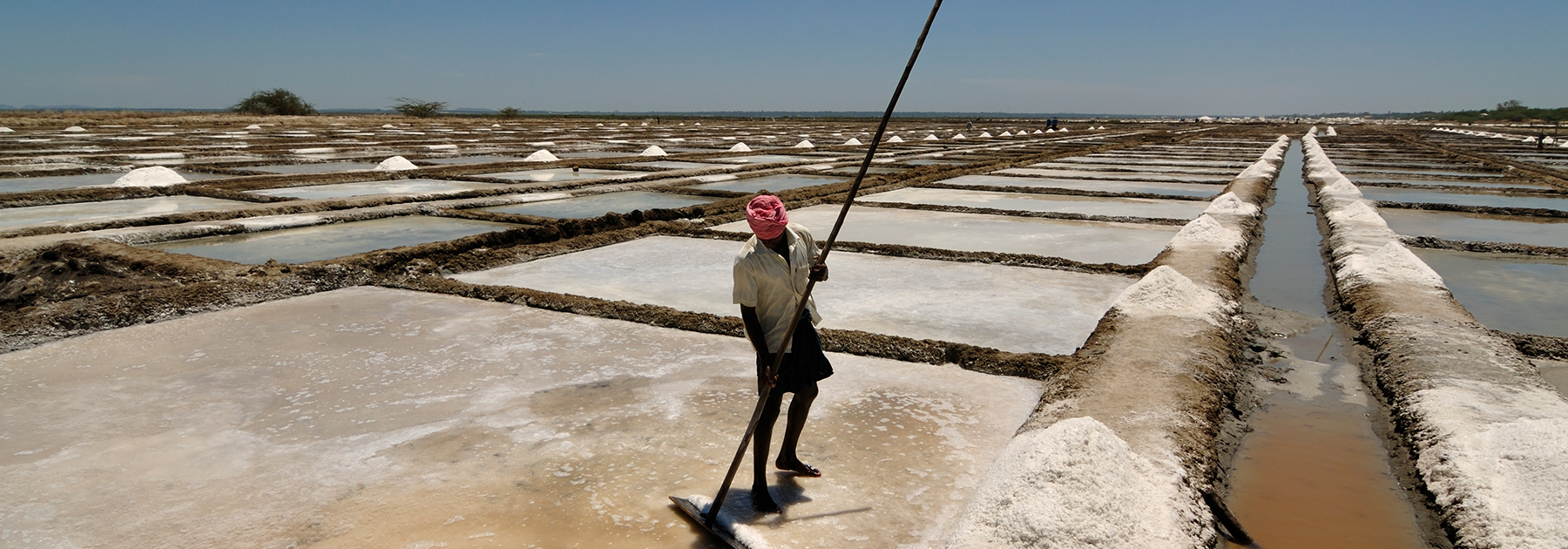 Salt pans in Marakkanam where sea water is pumped into large pans and dried. (Sandip Dey, licensed under CC BY-SA 3.0)